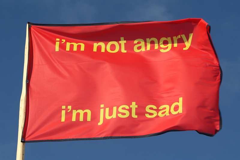"<p style=""text-align: center;""><span style=""font-size: 8pt;"">Nora Turato, I'm not angry – I'm just sad, 2018, CMYK print on flag fabric, 100 x 150 cm, Edition 1/4, Kunstverein Amrum, 2018. Photo: Sandra Hermannsen"